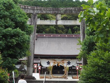 橘神社P7048566