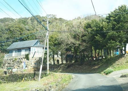 3-大村市日泊町 レトロハワイアンカフェP1180088