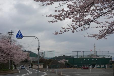 3-諫早球場DSC05539