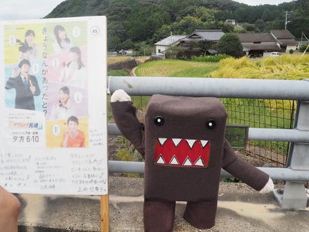 24-波佐見町 鬼木棚田まつりPA060189