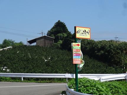 7-風の牧場DSC02421