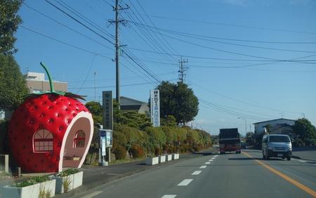 1-ぱすたろうDSC09876
