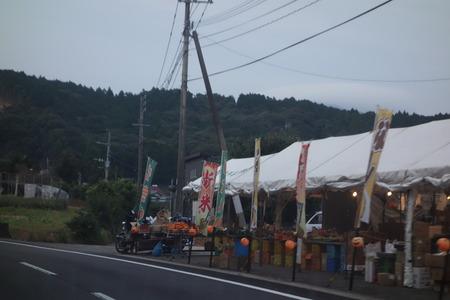 2−白木峰コスモス