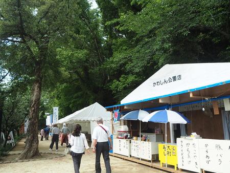 6-大村公園 花菖蒲PP5310025