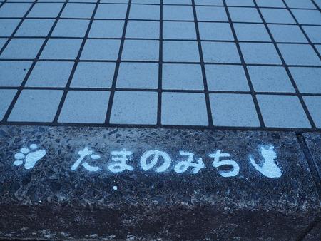 6-諫早駅 たまのみちPB205764