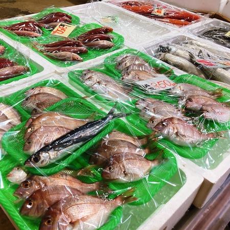 2021.09.03 西海橋物産館 魚魚市場IMG_4675