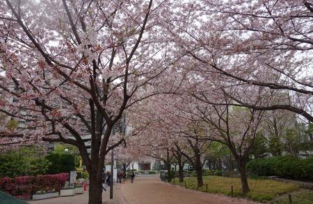 14-東品川海上公園DSC06509