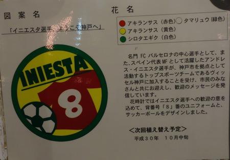 2-神戸DSC06578