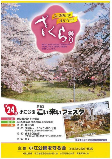 小江公園 桜フェスタ