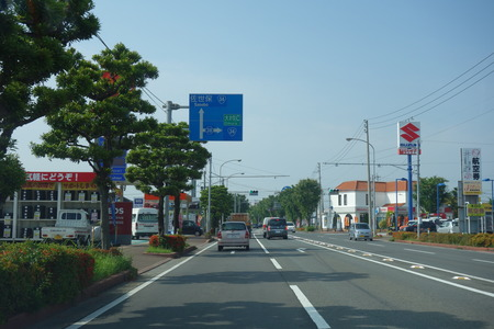 3-大村市ひまわりDSC01247