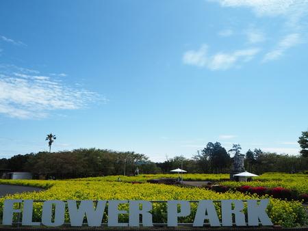 1-−島原市 有明フラワー公園P4035341