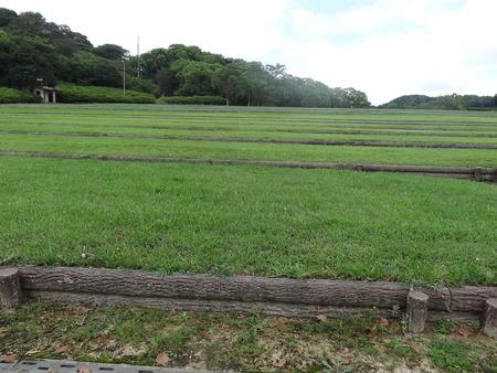 18−稲佐山DSC00016