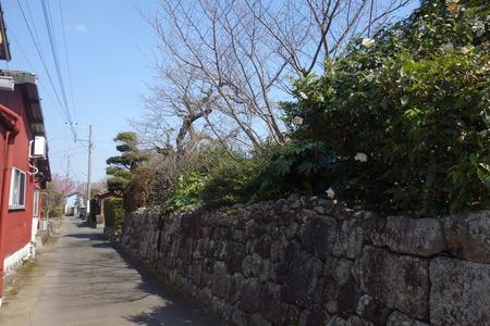 20-国見町神代小路 緋寒桜の郷まつりDSC00418