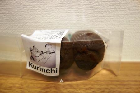 11-kurinchiDSC08397