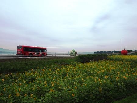 8-諫早市小長井町 フルーツバス停とひまわりP7193370