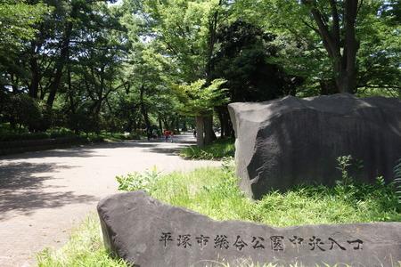 7−平塚市総合公園DSC02282