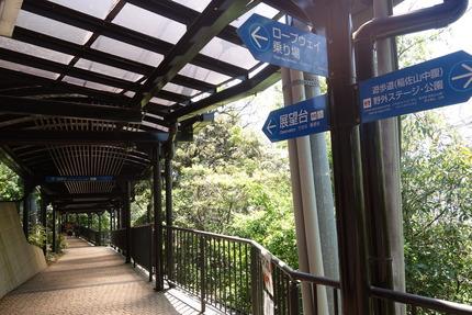16-稲佐山DSC00138