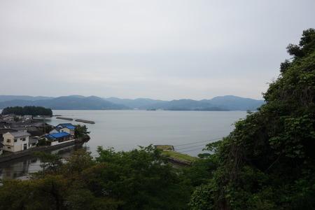 20-大村公園 花菖蒲DSC07599