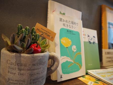 14-長崎市玉園町 花カフェ ガーデンコーヒーPB084193