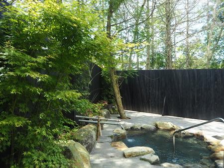 27-東彼杵町 そのぎ茶温泉 里山の湯宿 つわぶきの花P5310320