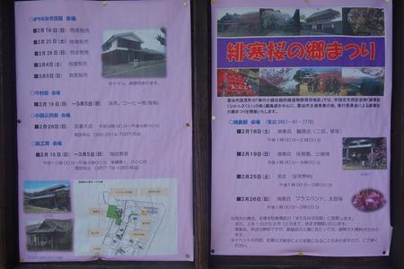 2−国見町神代小路 緋寒桜の郷まつりDSC00358