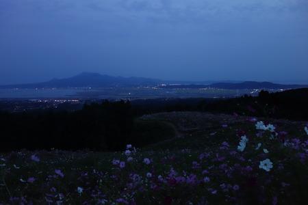 13−白木峰コスモスDSC00707