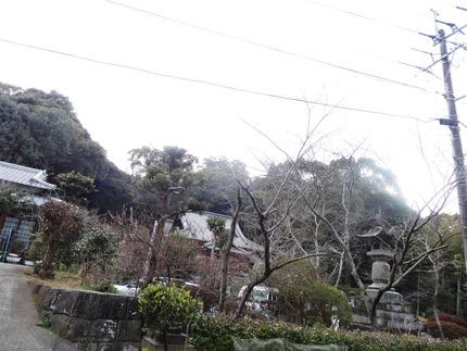 4-高城神社DSC08438