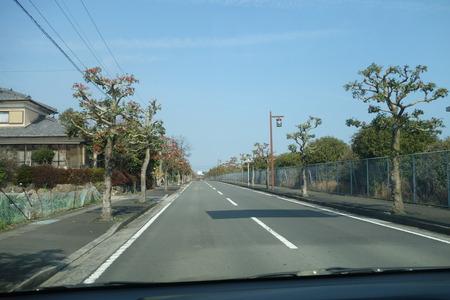 20-島原市 宝楽DSC06182