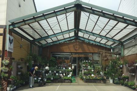 3-松尾農園DSC04355