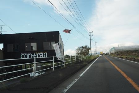 4−白木峰高原 コスモス畑 コントレイルPA110773