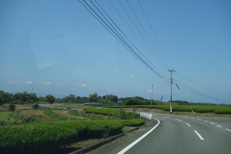 11-東彼杵町 椛DSC01960