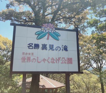 大村市東野岳町 OSOTOYA オソトヤIMG_2880