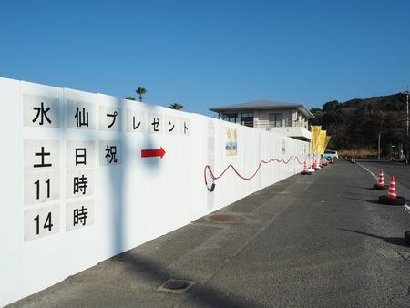 22-野母崎水仙まつりP1100357
