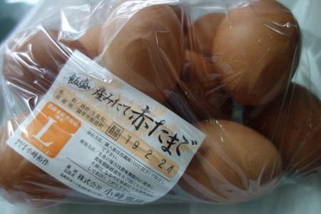 8−小峰鶏園DSC05541