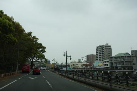 1-すみれDSC04237