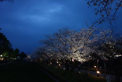 11−大村公園DSC05002