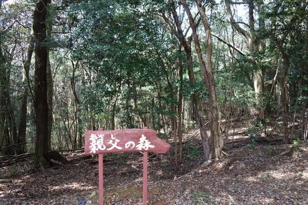 22-大村市千本桜公園DSC05956