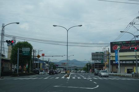 1-竹林DSC09868