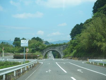 7-東彼杵町 そのぎ茶温泉 里山の湯宿 つわぶきの花P5310199
