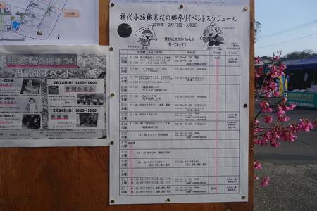 20-神代小路DSC06410