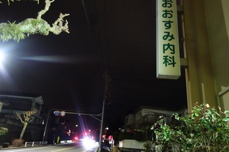 1-がじゅまるDSC00279