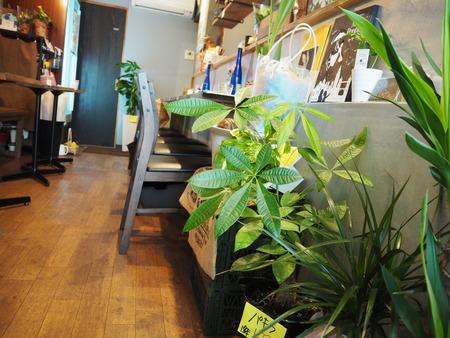 12-長崎市玉園町 花カフェ ガーデンコーヒーPB084175