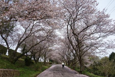 7-長崎農業大学DSC05715