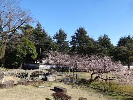 7-諫早公園DSC01038