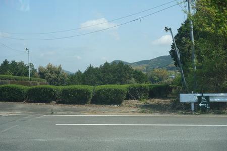 9-東彼杵町 椛DSC01957