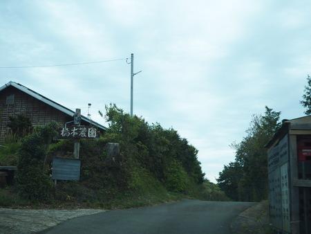 9-諫早市福田町 梅蓮P4190505