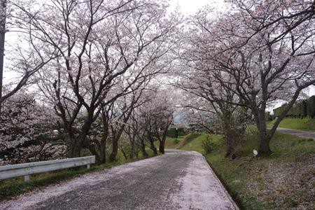 7-長崎農業大学DSC05711