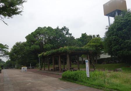 2−金立公園DSC08972
