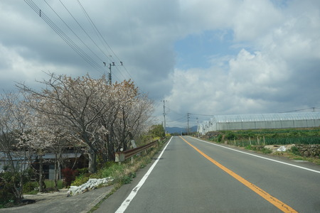 1-白木峰高原DSC01467