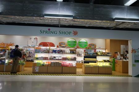 11-成田空港DSC03872